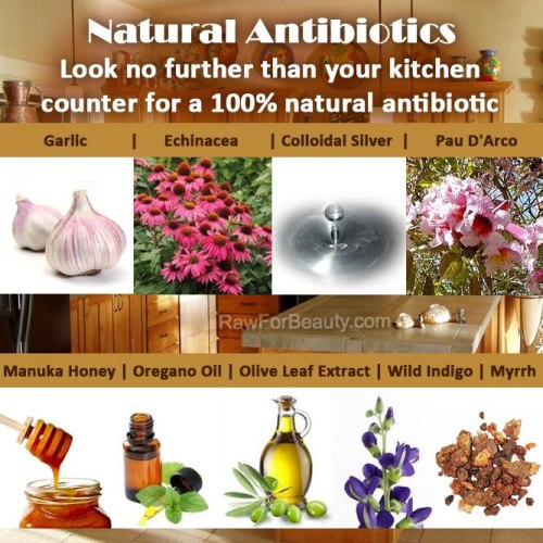 antibiotics_natural01