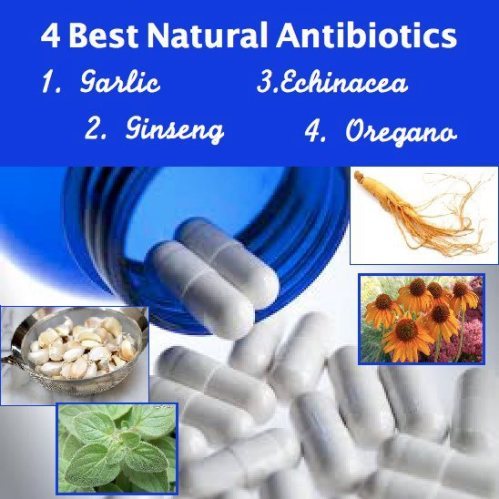 antibiotics_natural02